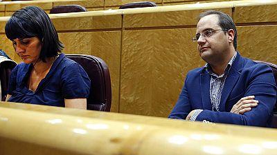 La reunión de los parlamentarios socialistas en el Senado escenifica la división del partido