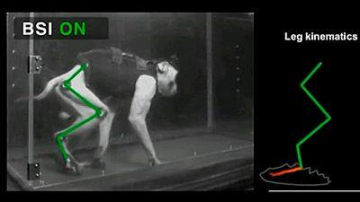 Monos paralizados vuelven a caminar con una interfaz que conecta el cerebro y la médula