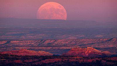Este lunes se podrá ver la Superluna más grande de los últimos 70 años