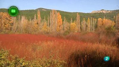 Agrosfera - En clave rural - Priego, Cuenca