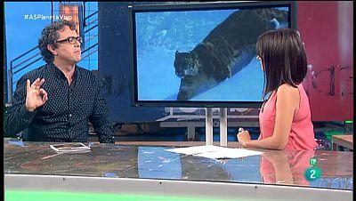 La Aventura del Saber. TVE. Taller de Naturaleza. WWF. Enrique Segovia. Informe Planeta Vivo 2016.