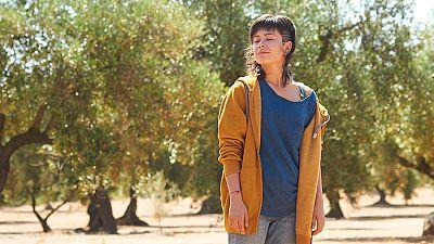 Dvd: 'El olivo' y 'Bruja, más que bruja'