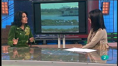 La Aventura del Saber. TVE. Mar Asunción. WWF España