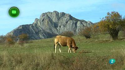 Agrosfera - En clave rural - Cuatro Valles, León