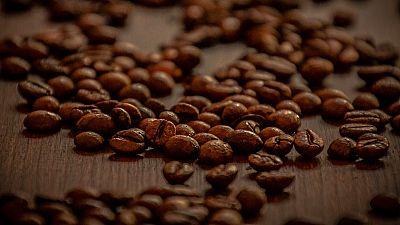 Una asociación de mujeres colombianas en lucha por abrirse camino en el mundo del café