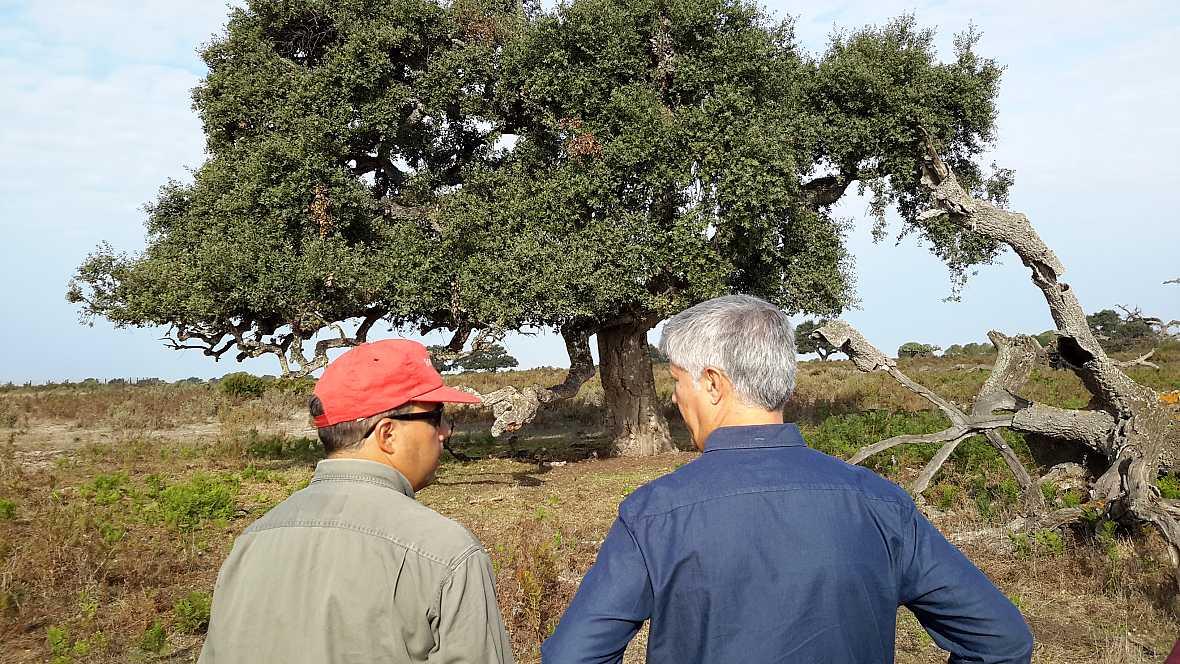 Lab24 - Ecología en Doñana y Einstein por España