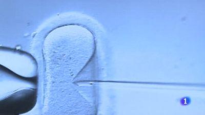 Un hospital holandés investiga si 26 mujeres fueron inseminadas con esperma diferente al de sus parejas