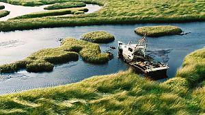 Parques nacionales norteamericanos: Los Everglades