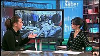 La Aventura del Saber. TVE. WWF. Celia Álvarez. Consumo responsable de pescado