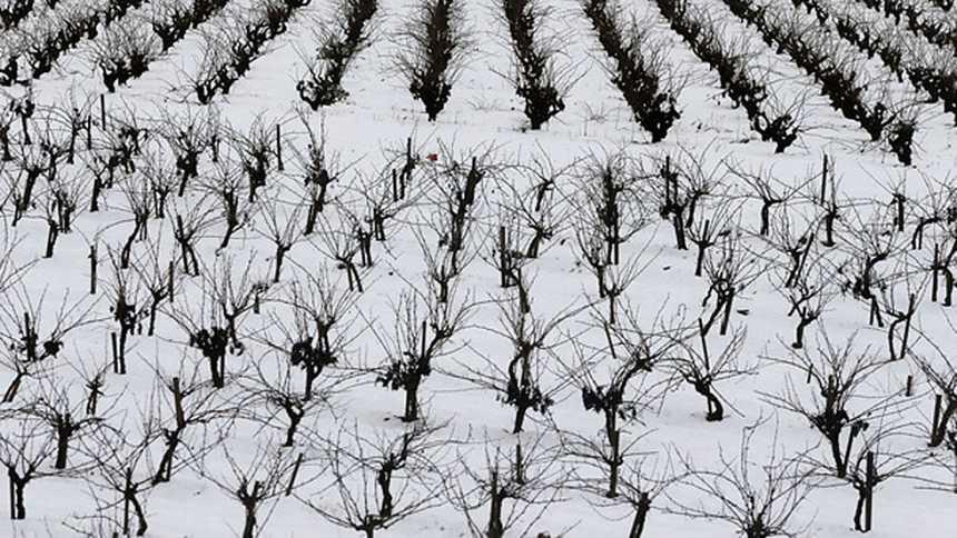 El Gobierno pide disculpas a las personas atrapadas por las nevadas