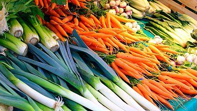 La ola de frío dispara el precio de las hortalizas cultivadas al aire libre