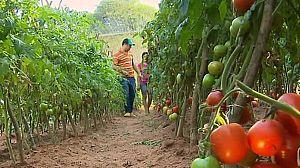 Paraguay, semillas de esperanza