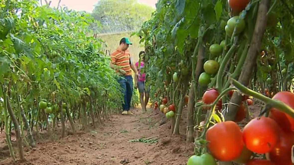 Pueblo de Dios - Paraguay, semillas de esperanza - ver ahora