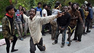 Cerca de 500 inmigrantes logran saltar la valla de Ceuta