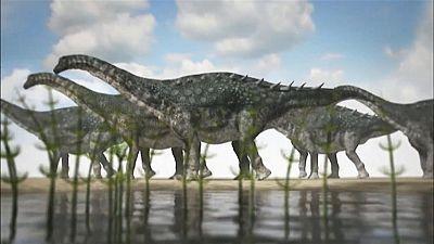 Un yacimiento en Cuenca revela para qué servía la armadura ósea de los últimos dinosaurios