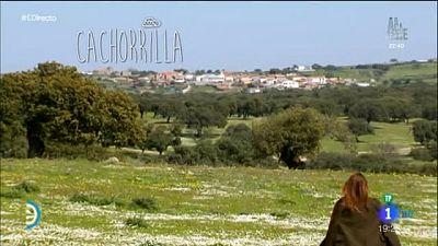 España Directo - Un pueblo con 60 vecinos, Cachorrilla