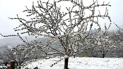 La nieve sorprende en el comienzo de la primavera