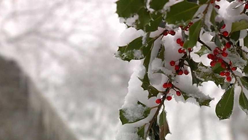 El frío y la nieve predominan en la península