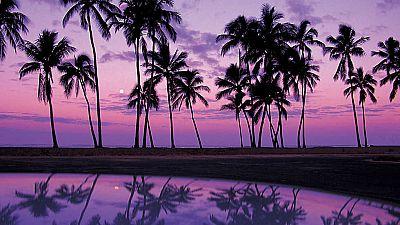 Grandes documentales - Sabores de Hawai: La magia del Pacífico - ver ahora