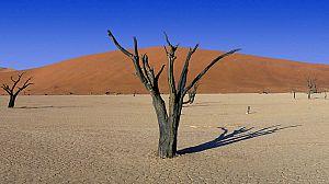 La gran sequía: La vida en el horno