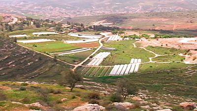 Israel crea el primer asentamiento en territorio de Cisjordania en veinte años
