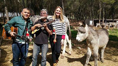 El burro Terrícola cumple un año