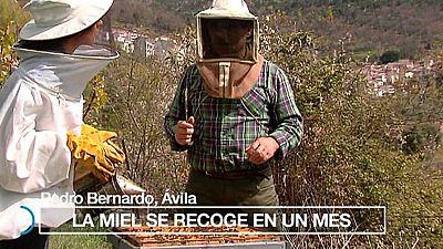 España Directo - 18/04/17 - ver ahora