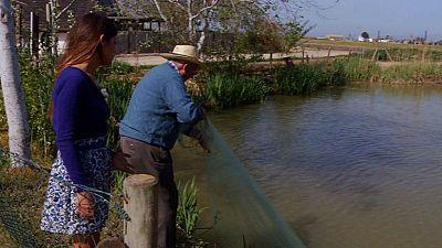 Pesca con ingenio