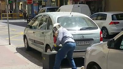 Así disuelve un apicultor un panal de abejas en una céntrica calle de Mula, en Murcia