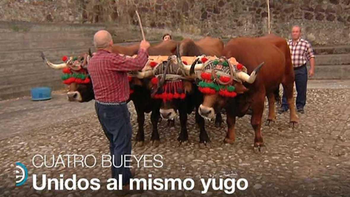 España Directo - 02/05/17 - ver ahora