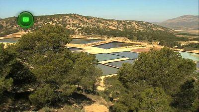 Agrosfera - En clave rural - Jumilla, Murcia