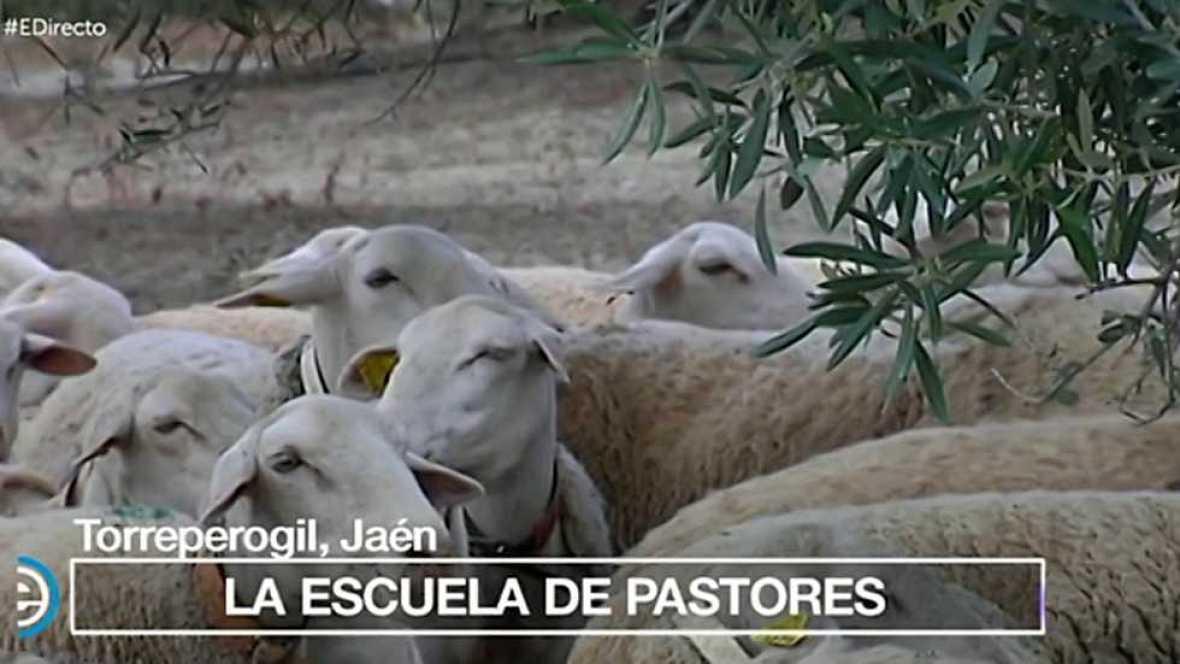 España Directo - 18/05/17 - ver ahora