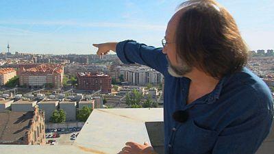 Halcón peregrino en el techo de la ciudad