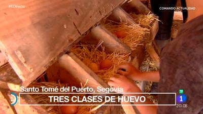 España Directo - Visitamos una granja casera ecológica en Segovia