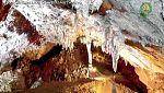 El escarabajo verde - El turista de las cavernas