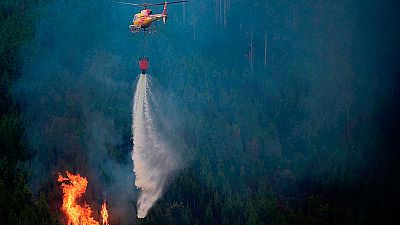 """Incendio en Portugal - Armando Ledo, teniente de la UME: """"La coordinación en los medios está empezando a dar sus frutos"""""""