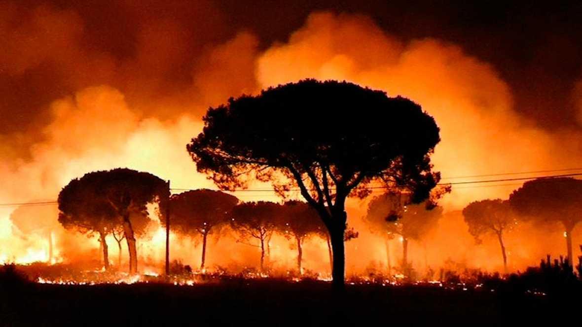 Incendio Moguer - Un incendio forestal obliga a desalojar a más de dos mil personas en el entorno de Doñana