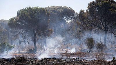 Dan por controlado el incendio forestal de Moguer, Huelva