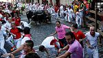 Vive San Fermín - Sexto encierro