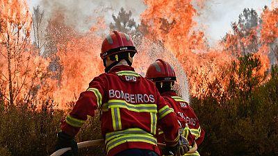 Francia y Portugal piden ayuda a sus vecinos para luchar contra los incendios forestales