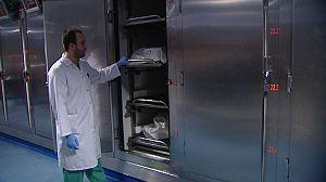 El análisis de las bacterias bucales de un cadáver podría servir para fechar su defunción