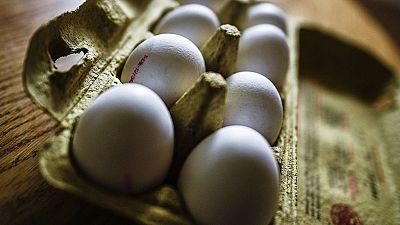 Las crisis alimentaria de los huevos contaminados alcanza ya a siete países europeos