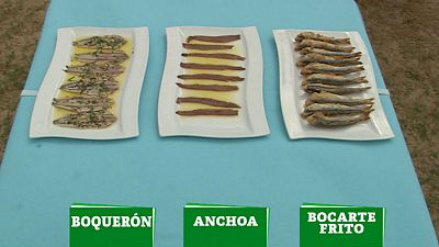 ¿Bocarte, anchoa o boquerón?