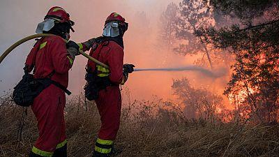 La oleada de incendios forestales en Portugal ha calcinado ya más de 140.000 hectáreas