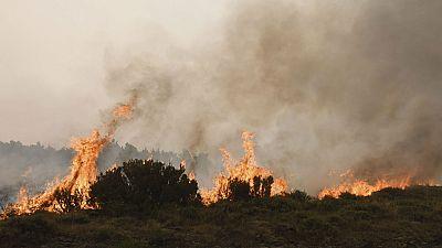 El incendio intencionado de León avanza sin control y mantiene 35 desalojados