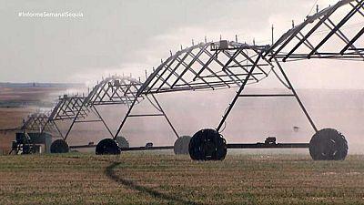 Informe semanal - El ojo de la sequía - ver ahora