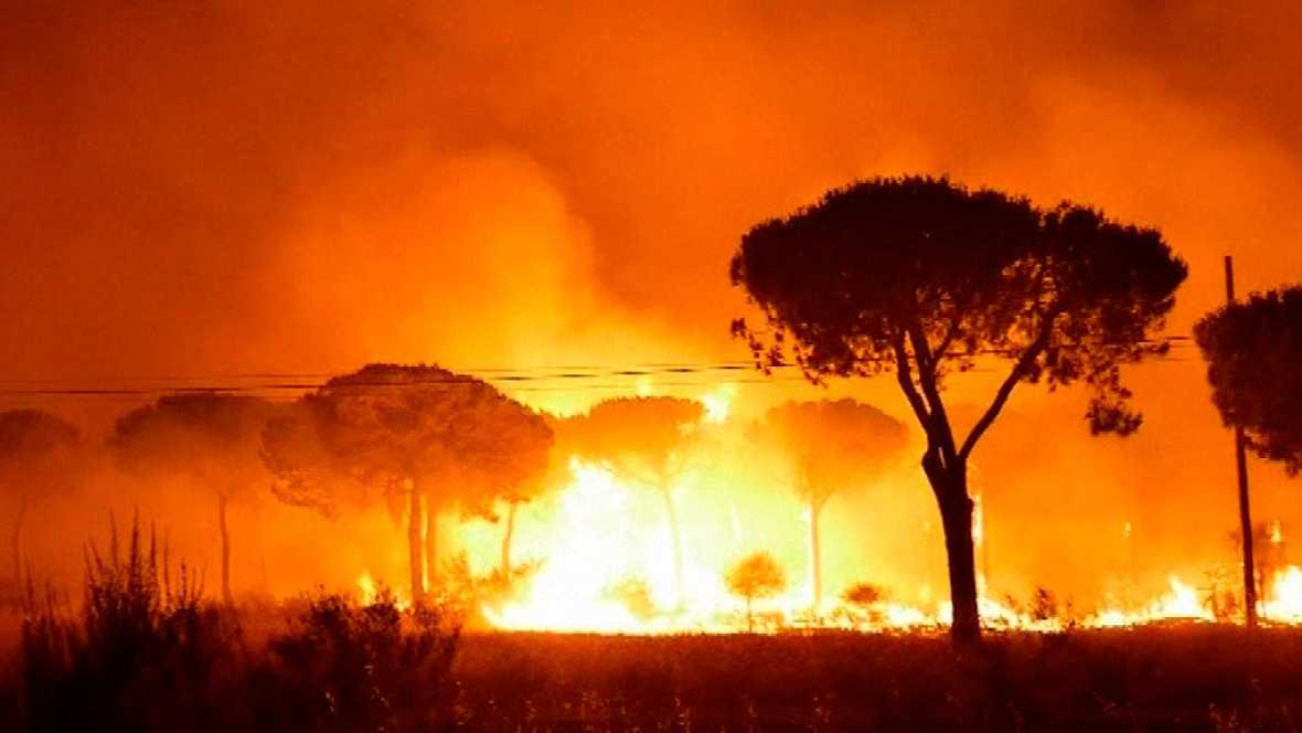 Declaran el administrador y dos trabajadores de la carbonería donde pudo haberse originado el fuego que ocasión el incendio de Moguer