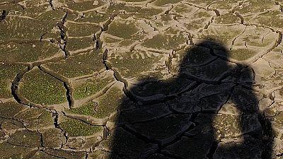 Se seca una de las lagunas del Parque Natural de las Lagunas de Ruidera