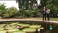 La Aventura del Saber. TVE. Jardín Botánico La Concepción III