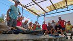 Aquí la tierra - Subasta de pescado abierta en Montgat